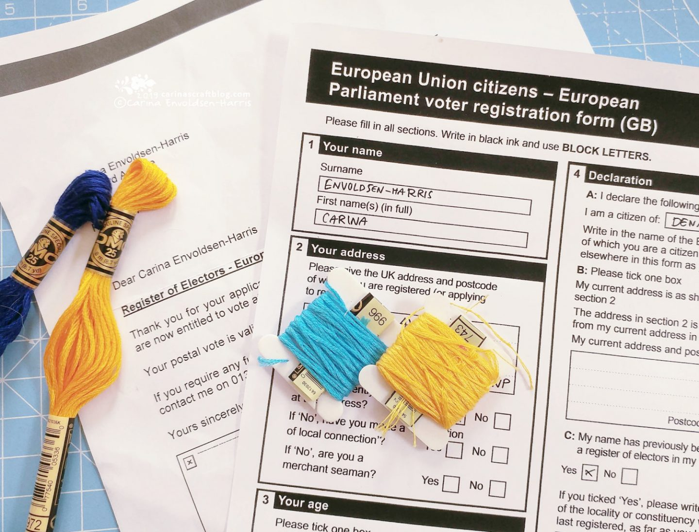 Vote in The EU Election – Carina's Craftblog