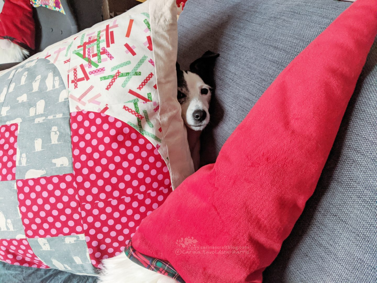 Dog face poking out from behind a big cushion.